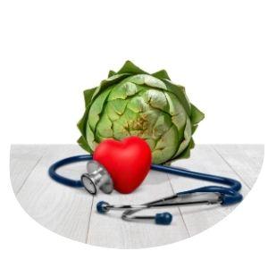 alcachofa para el colesterol