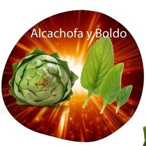 alcachofa y boldo